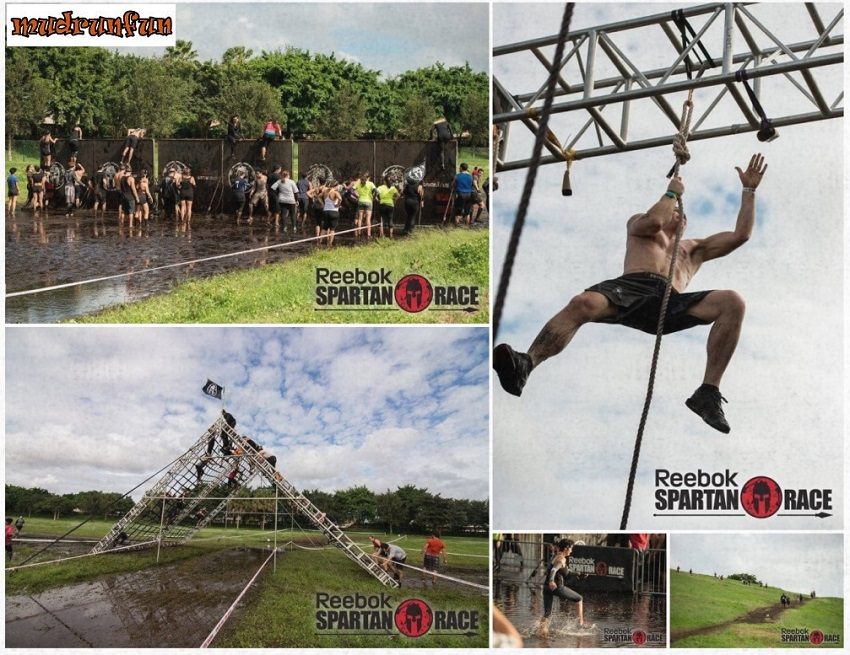 Race Recap: Miami – Spartan Sprint – December 6, 2015